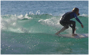 Surfing in Noosa